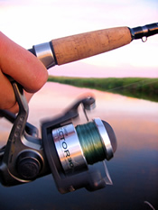 fishing pole reel