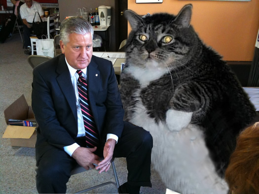 flabby tabby with Jerry Jennings