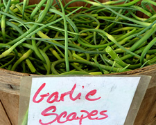 garlic scapes in basket