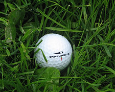 golf ball in rough