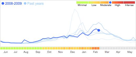 google flu ny 2009-02