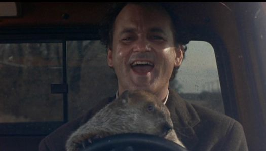 groundhog day murray.jpg