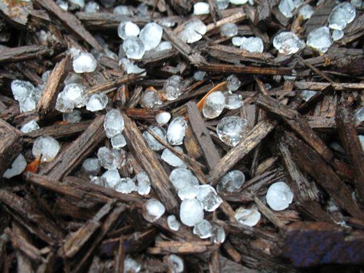 hail in mulch