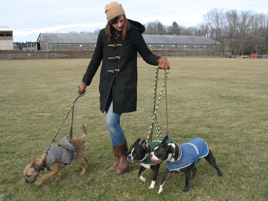 hounds on the hudson jen pursley cold weather