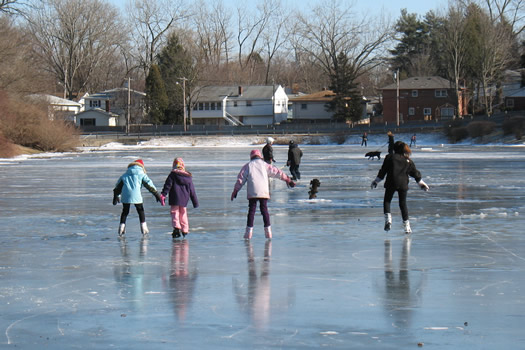 ice skaters on Buckingham Pond