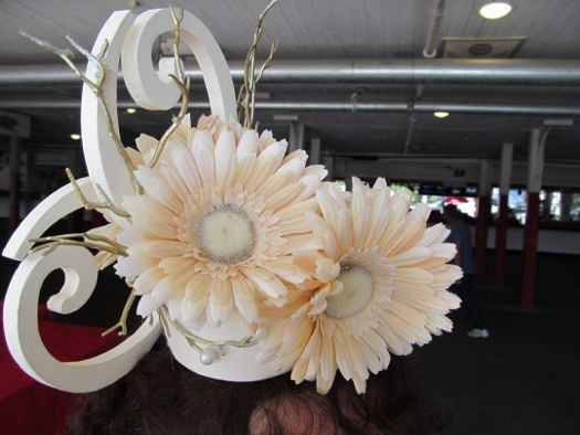 2012 hat gerbera daisy.jpg