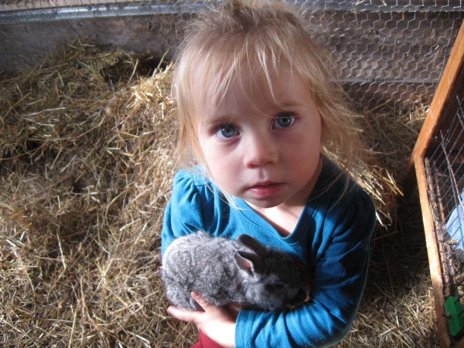 Radix - Little girl with bunny .jpg