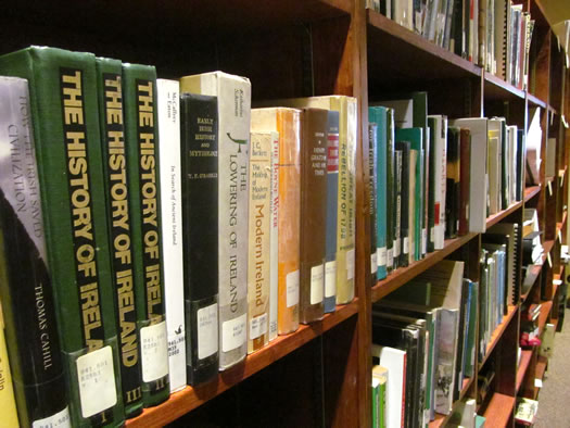 irish american museum library closeup