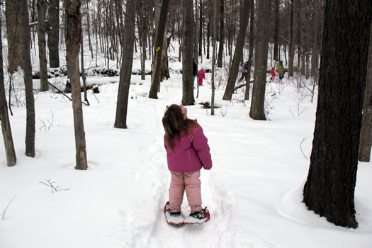 katie's daughter snow shoeing in the woods