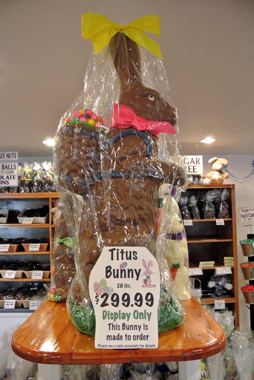 krauses_chocolate_bunny_titus.jpg