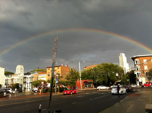 lark and madison rainbow