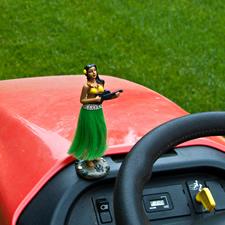 lawn mower hula