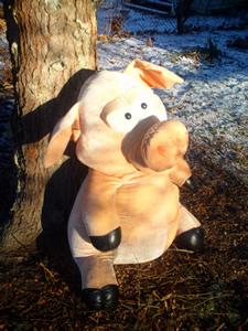 martin's pig