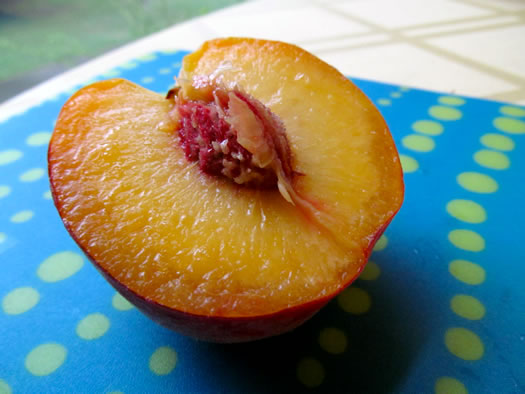 maynard_farms_yellow_peaches.jpg