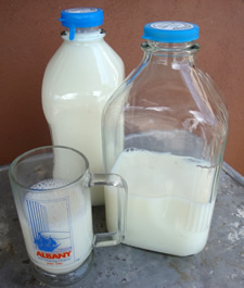 meadowbrook milk glass crop