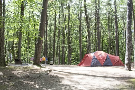 moreau_lake_state_park_occupied_camp_site.jpg