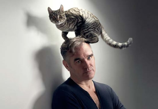 morrissey with cat horizontal
