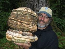mycologist Paul Stamets