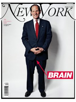 New York mag Spitzer cover