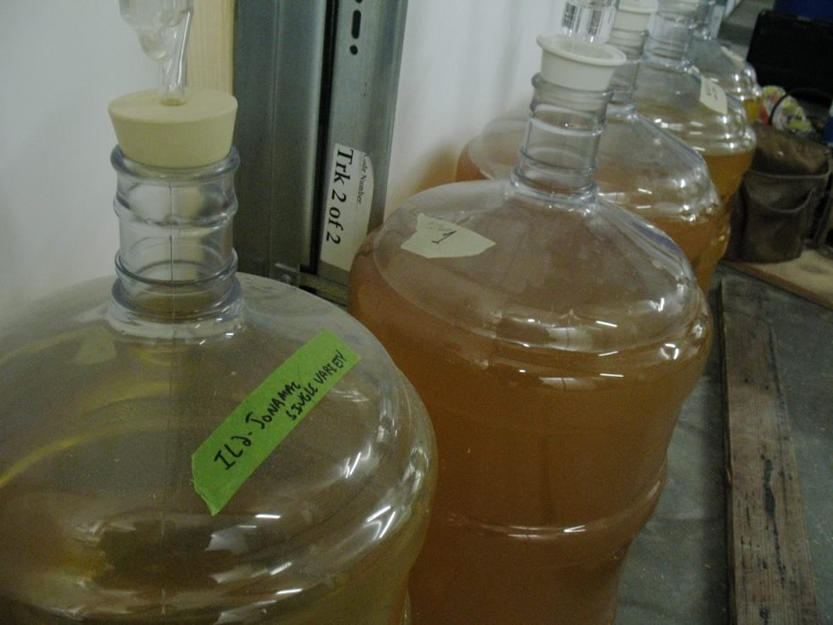 nine_pin_cider_bottling_05.jpg