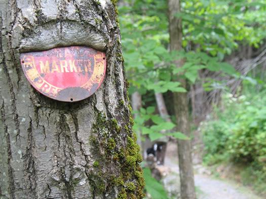 huyck trail marker