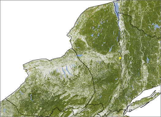 ny tree mass map nasa
