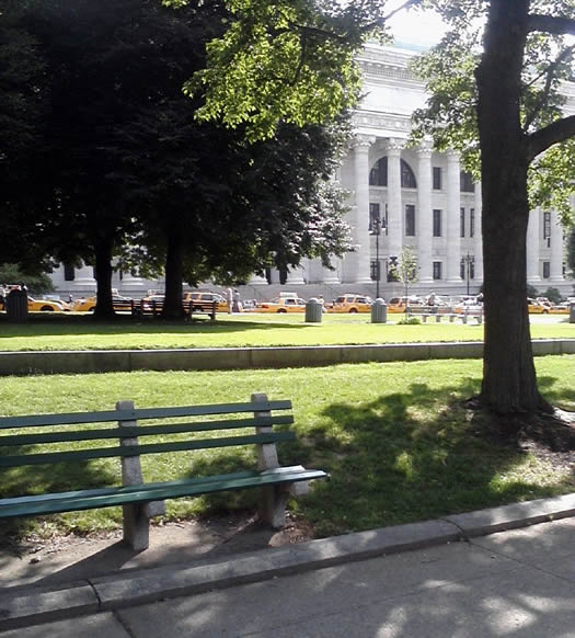 nyc_taxis_capitol_2011-06-21_Summer.jpg