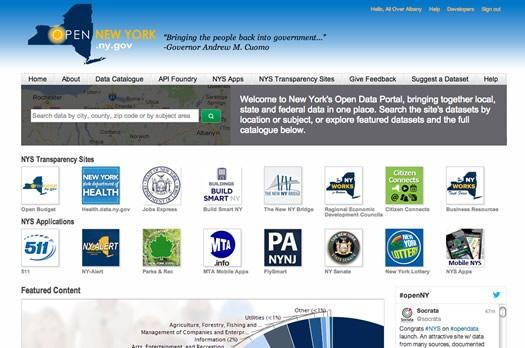 nys data site screengrab