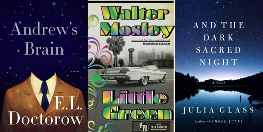 visiting writers 2014 spring book covers