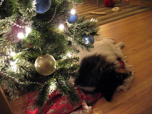 otto christmas tree