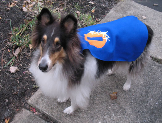 otto superhero cape