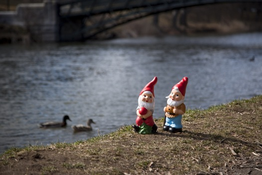 park gnomes