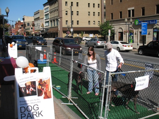 parking day 2014 dog park
