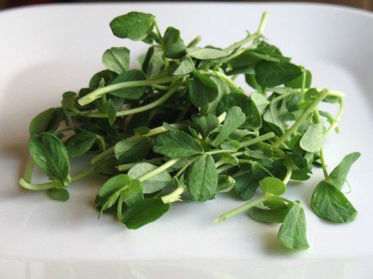 pea shoots