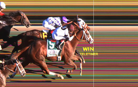 photo finish Travers 2013