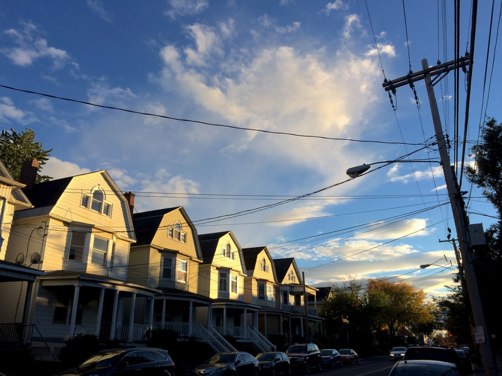 Albany Quail Street houses autumn light