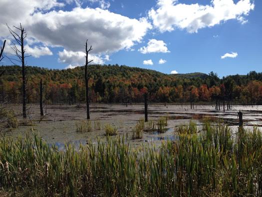 ragnar adk 2013 wetland