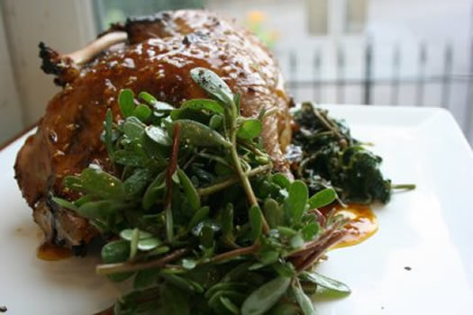 roasted chicken with purslane and lambs quarters