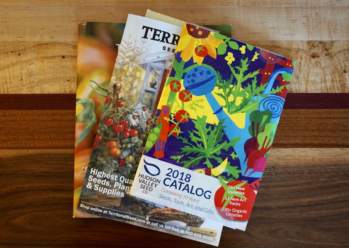 seed catalogs on table