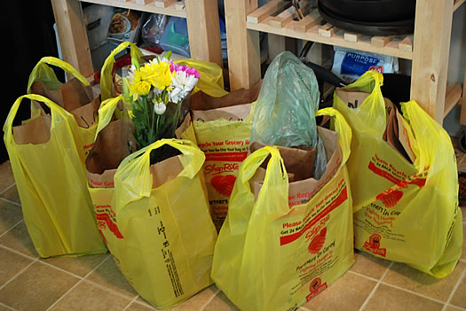 Delivery comparing shoprite from home and price chopper Shop at home
