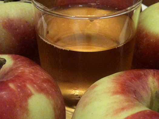 slyboro original sin cider closeup