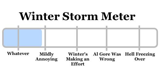 snowy apocalypse meter 2008-12-11