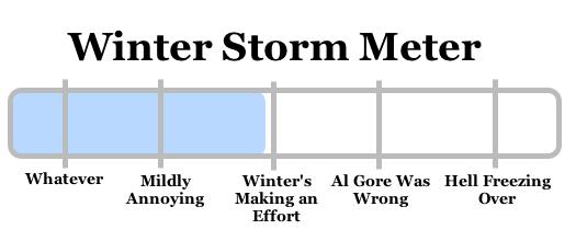 snowy apocalypse meter 2008-12-18
