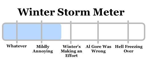snowy apocalypse meter 2009-01-06