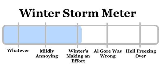 snowy apocalypse 2009-01-27