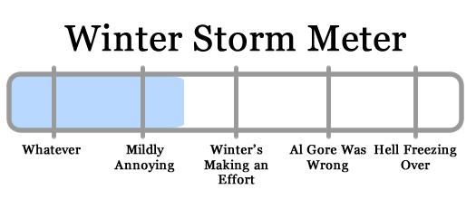 snowy apocalypse meter 2010-01-28