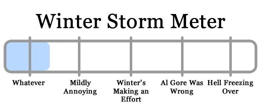 snowy apocalypse meter 2010-02-16