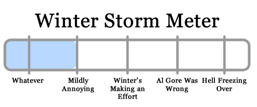 snowy apocalypse meter 2010-02-22