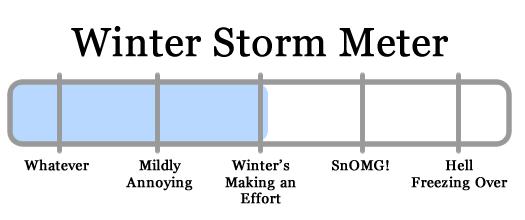 snowy apocalypse meter 2011-01-06