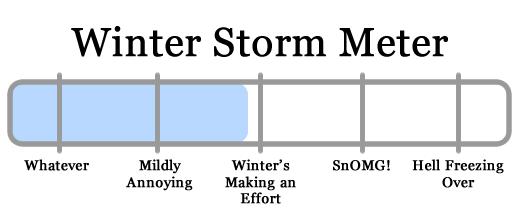 snowy apocalypse meter 2011-01-11